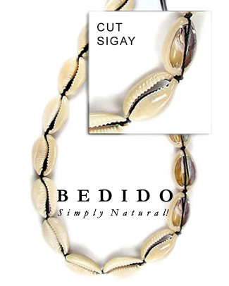Sigay Shell Beads
