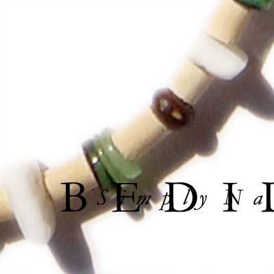Green Shell Combination Bracelet Wooden Bracelets